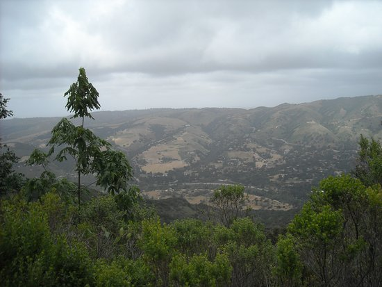 View of Carmel Valley - from the ridge