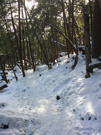 Swallow Falls State Park: A walk in the snow