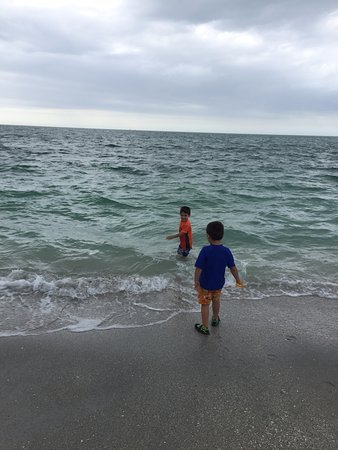 Boca Grande, FL: Water was bit cold but they didnt mind