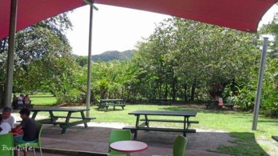 Diwan, Australia: 庭の風景1