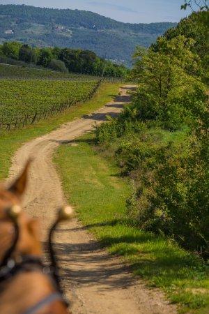 Montagnana Val di Pesa, Italy: I Cocchieri di' Chianti