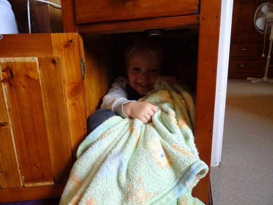 Woodlyn Park: The best entertainment was hiding on the cupboards.