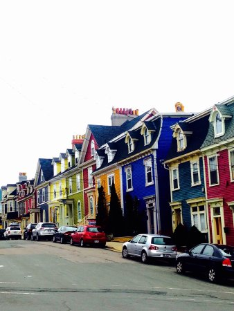 Jelly Bean Row >> Jellybean Row Houses Picture Of Jellybean Row Houses St John S