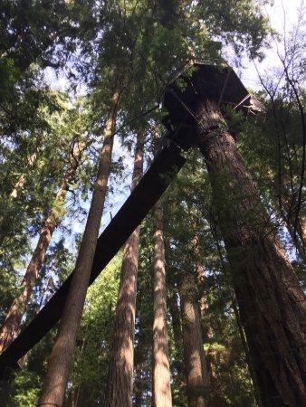 North Vancouver, Canadá: Lugar maravilloso