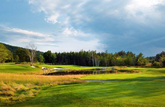 The Lakes Golf Club: #8 par 3