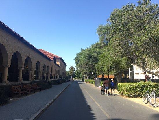 Palo Alto, Kalifornien: photo2.jpg