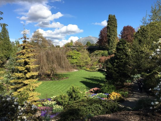 Queen Elizabeth Park: photo9.jpg