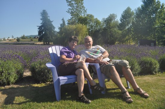 Sequim, WA: a place to sit back and smell the laender