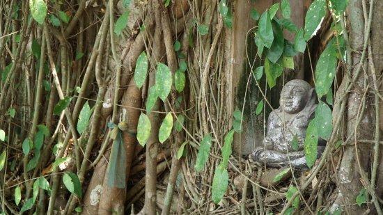 Bang Khonthi, Thaïlande : mini buddha statue outside of the temple
