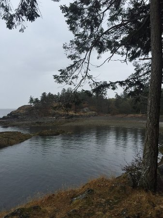 Nanaimo, Canada: The View of Neck Point