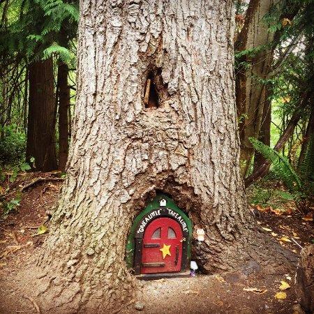 Nanaimo, Canada: 妖精のお家。ドアには『GIVE A LITTLE, TAKE A LITTLE』と書いてあって、中を開けるとたくさんのおもちゃが!!ここから1つ持って行ってもいい代わりに、何か入れていってねと