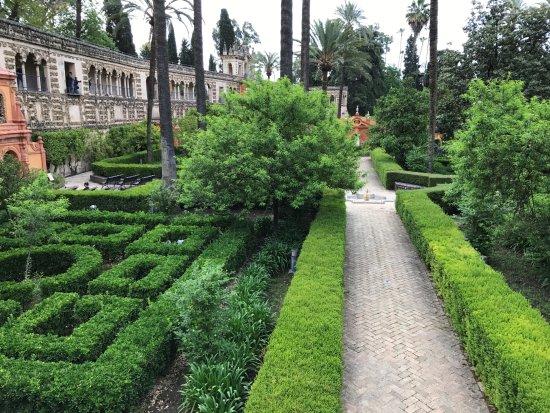 The gardens bild von jardines de los reales alcazares sevilla tripadvisor - Jardines de sevilla ...