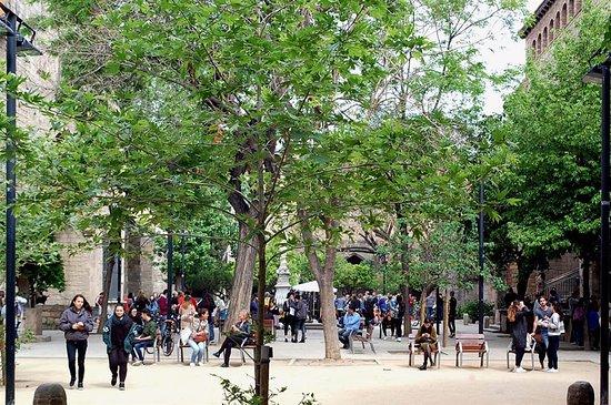 Library of Catalonia