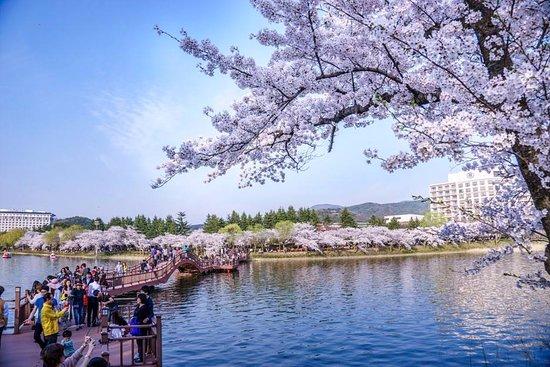 Bomun Tourism Complex : 경주 보문단지