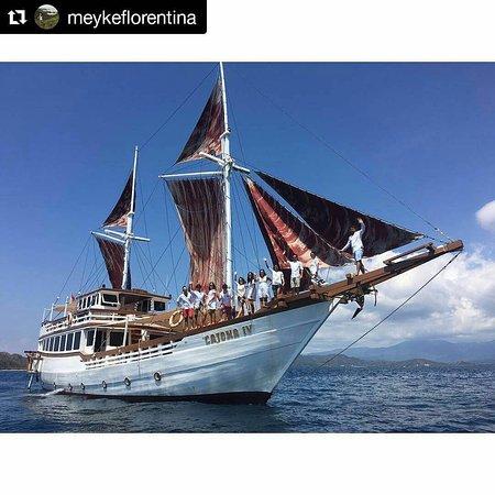 Komodo Wonderfull Tour: komodo phinisi boat