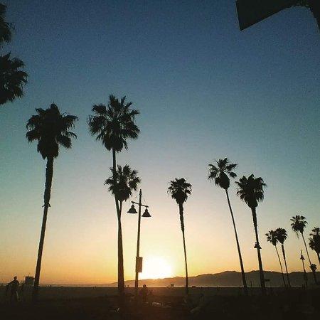 Venice Beach Suites & Hotel: photo1.jpg