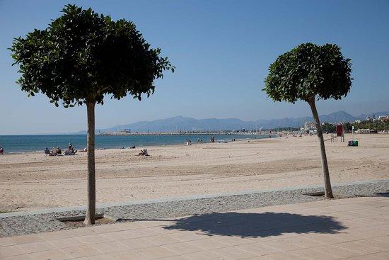 Arago Beach Resort