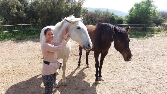Amargeti Equestrian Club: With lovely horse Babulina and her ''flatmate'' ))