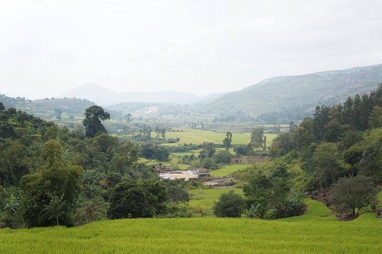 Araku Valley, India: view from the place