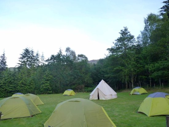 Invermoriston, UK: Additional camping space in adjoining field