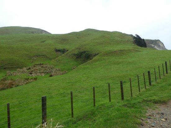 Golden Bay, New Zealand: Cape Farewell