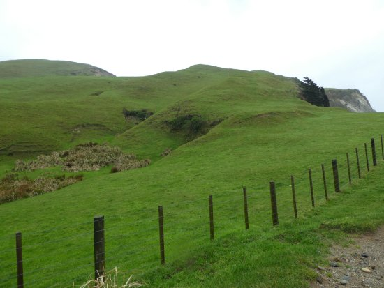 Golden Bay, Selandia Baru: Cape Farewell