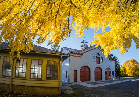 Auburn, Νέα Υόρκη: Carriage House in the fall