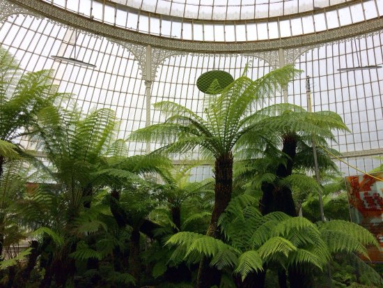 Botanic Gardens and Kibble Palace: photo4.jpg