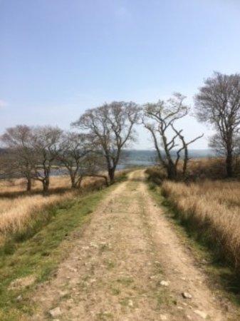 Slaidburn, UK: Stokes Reservoir walk