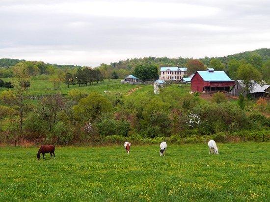 Sperryville Image