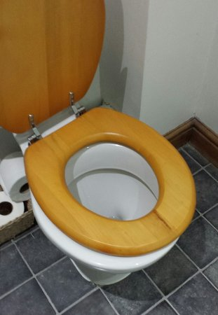 Rode, UK: Toilet seat half off and so loose it was quite dangerous