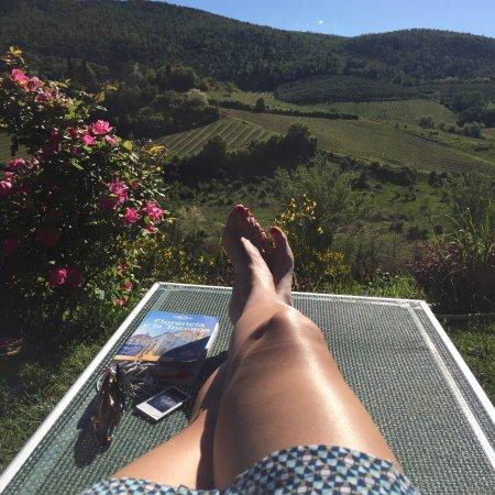 Villa del Sole: photo4.jpg