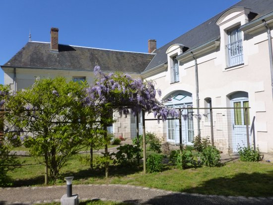 Monthou-sur-Cher, Francia: Les glycines