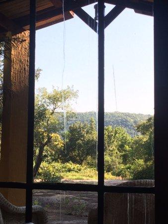 壁虎山林小屋照片