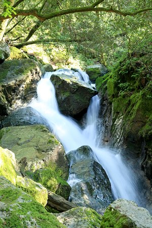 Sugarloaf Ridge State Park: Waterfall