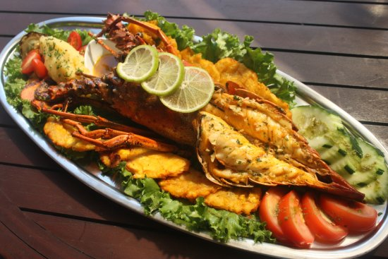 Casa del Mar Sea Food Restaurant: Langosta Coco Beach / Coco Beach Lobster
