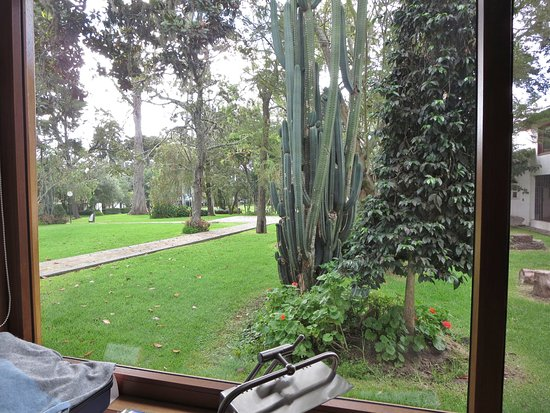 Puembo, Ecuador: View of grounds from our window