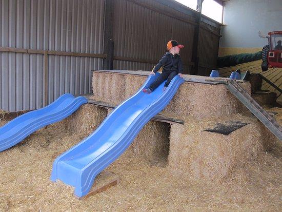 the big barn slids picture of farmer palmer s farm park poole