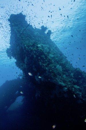 Matahari Tulamben Resort, Dive & SPA: liberty wreck