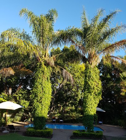 Hlangana Lodge: Hlangana Pool