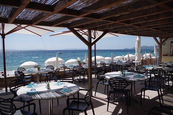 Pazzi Plage Le Lavandou Restaurant Avis Numéro De Téléphone Photos Tripadvisor