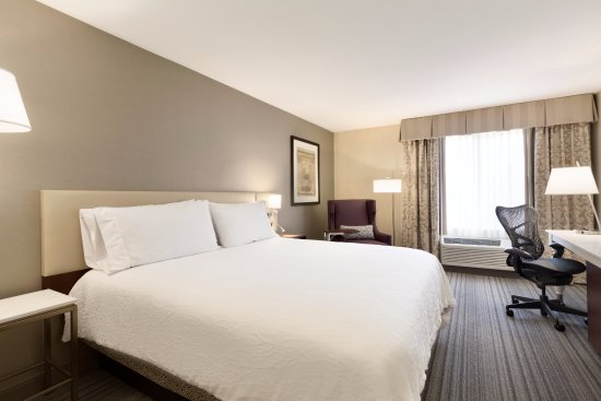 Milpitas, CA: King Guest Room