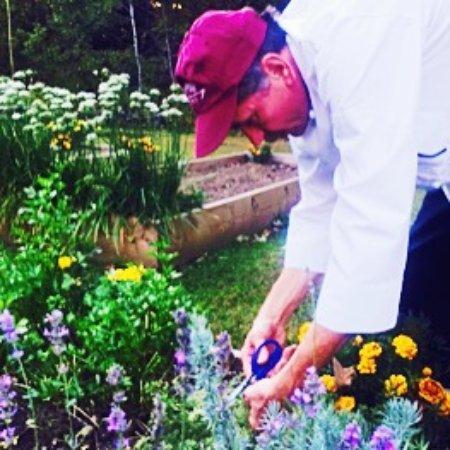 Perkinsville, VT: Chef Michael Ehlefeldt in the garden