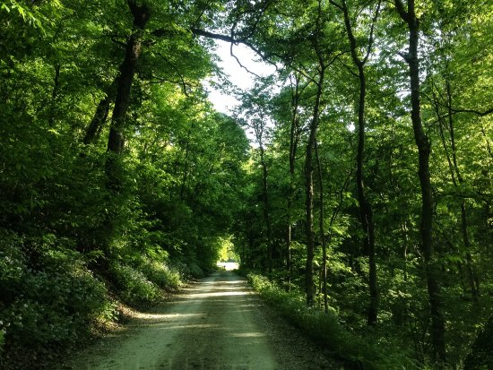 Eureka, MO: The road to Claverach Farm.