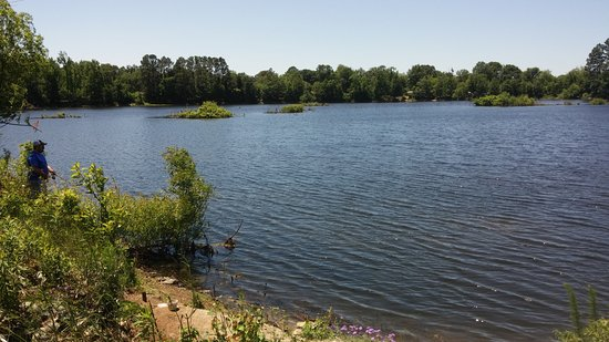 Warner Robins, Gürcistan: Nice place to fish