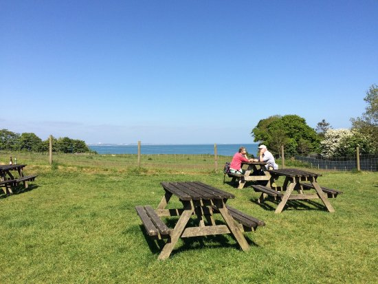 Purbeck Hotel Swanage Reviews