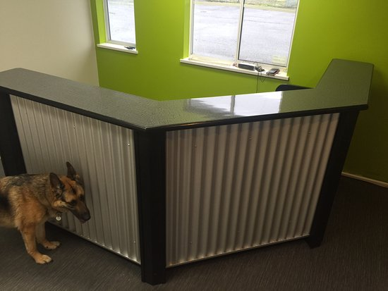 Customer Service Desk - Picture of Vancouver Skydive, Pitt