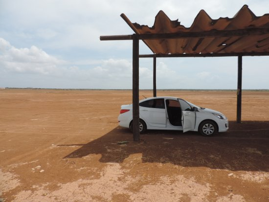 Sarigua National Park: Schatten!