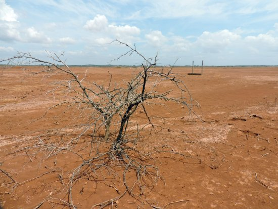 Sarigua National Park: Wüste - trocken, heiß, staubig.