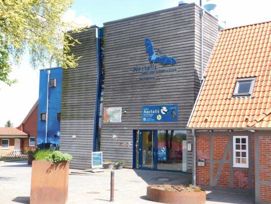 Bad Segeberg, Tyskland: Eingangsbereich Museum
